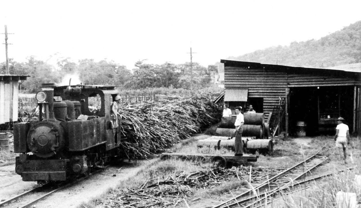 test Fowler 16338 TULLY SUGAR MILL 2 ARRIVES WITH A LOAD OF STICK CANE KMcD
